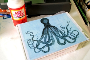 Octopus cigar box