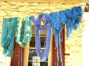 Yellow onion and indigo dyes