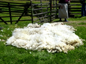 Leicester longwool fleece